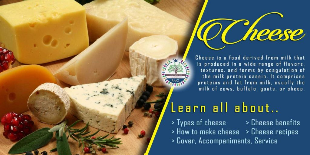 Cheese – Types, Cover, Accompaniments and Service by BNG Hotel Management Kolkata