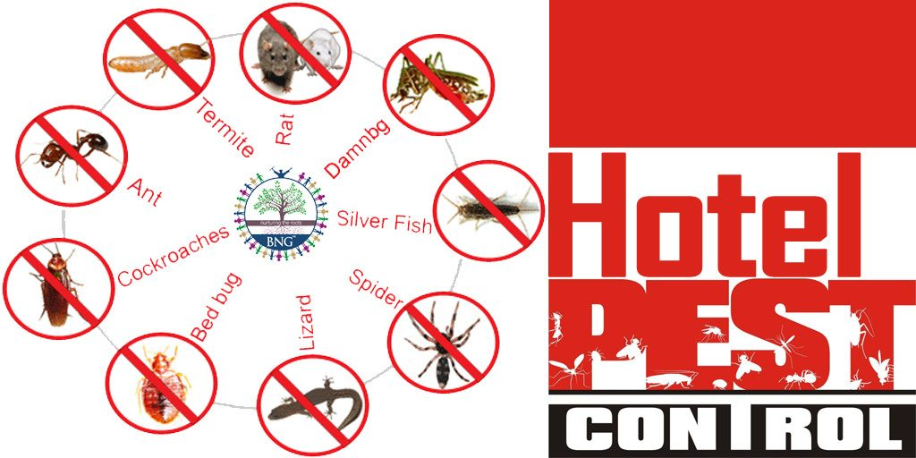 Pest Control Methods for Hotels and Restaurants by BNG Hotel Management Kolkata